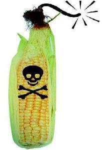 Monsanto-2