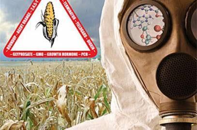 Monsanto-5